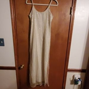 Shear Toule Sequin with slip..worn once